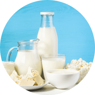 dairy_circle
