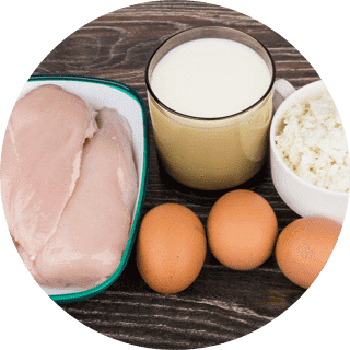 protein_circle